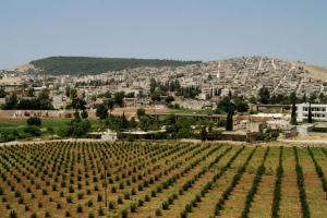 مدينة عفرين